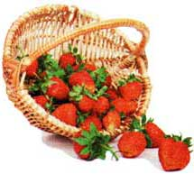 набрать ягод