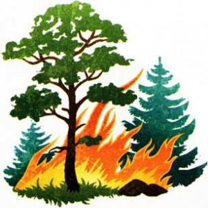 Приближающийся пожар