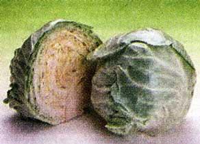Капусту брокколи и цветную капусту