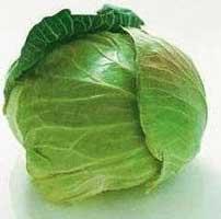 свежий капустный лист