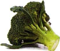 брокколи и цветную капусту