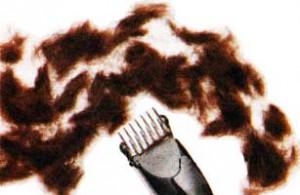 Стричь-брить