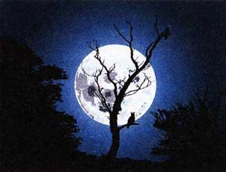 лунный человечек