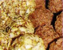 кусочек грецкого ореха