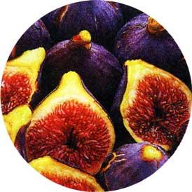 Инжир, или Фига, или Смоковница обыкновенная, или Винная ягода