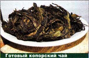 копорского чая