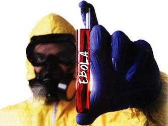 эпидемия африканской лихорадки