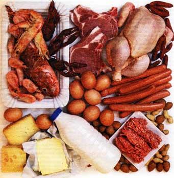 О белковых диетах