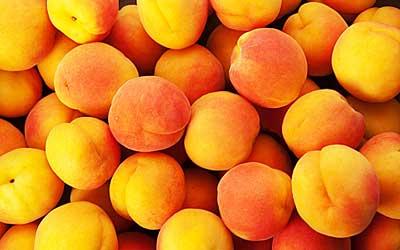 ешьте абрикосы