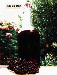 Сок из ягод бузины