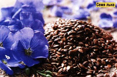 ценность семян льна