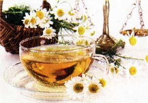 цветков ромашки лекарственной