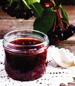 О пользе черноплодной рябины
