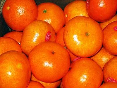 кожуру апельсинов и мандаринов