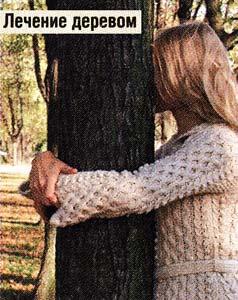 нашли свое дерево