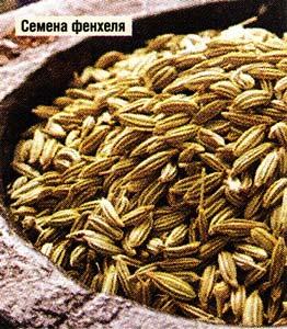 семян фенхеля