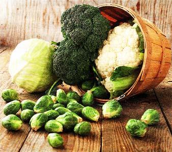 овощи долголетия