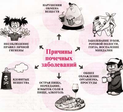 Причины заболевания почек