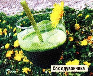 сок одуванчика