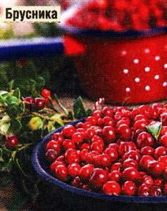ягодах брусники