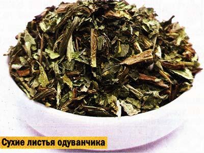 листьев одуванчика