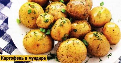 сваренного в мундире картофеля